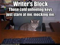 funny-pictures-cat-has-writers-bloc1